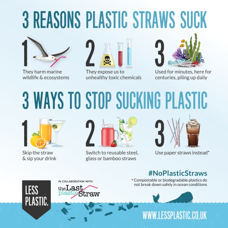 3-reasons-ways-last-plastic-straw-collaboration-straws-graphic-25cm.jpg